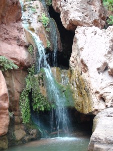 Waterfalls in Grand Canyon