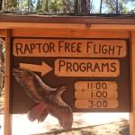 Sign for Raptor Free Flight Program